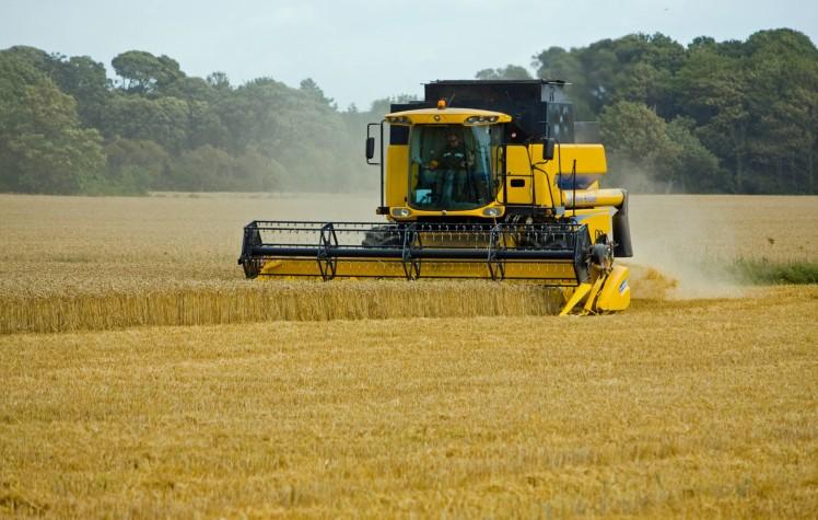 wheat-threshing (1)